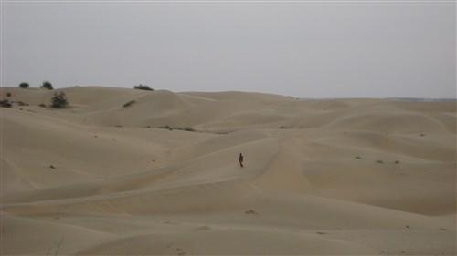 240 The Great Thar Desert.jpg