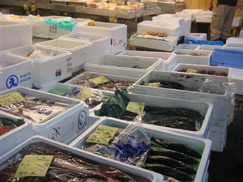 223 Tsukiji Fish Market.jpg