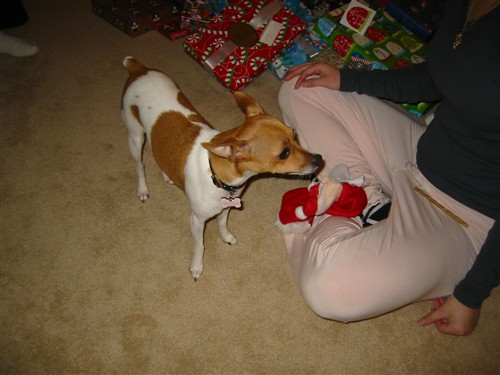 045 Christmas in Iowa - 2006.jpg