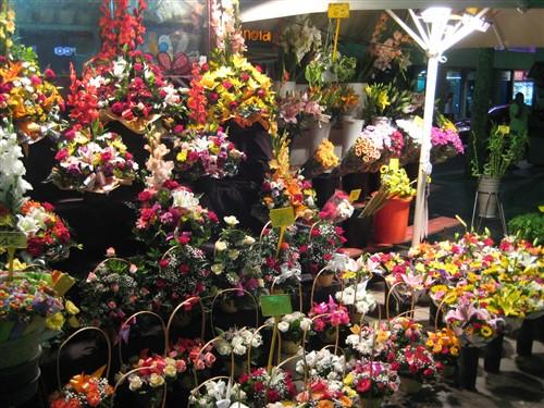 233 Flower shop on La Rambla.jpg