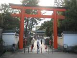View The Japan Album