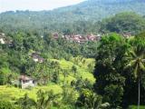 View The Bali Album