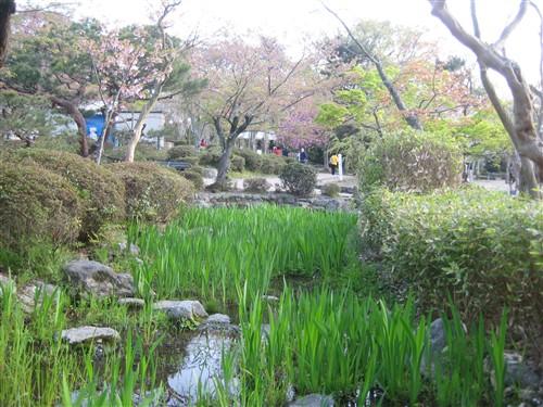 051 Maruyama-koen park.jpg