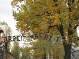 View The Poland Album